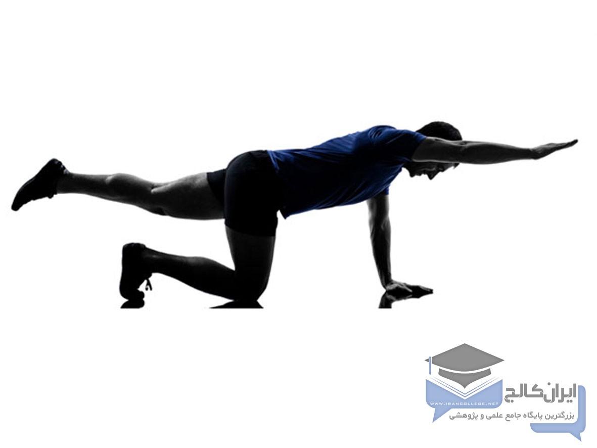 ورزش و دیسک کمر