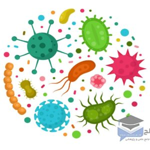 میکروارگانیسم ها