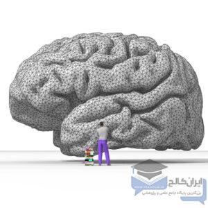 انگیزش در مغز انسان