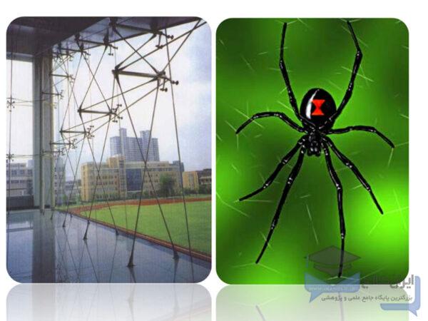 اتصالات عنکبوتی
