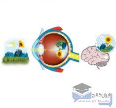 پاورپوینت-نور-و-دیدگانی-در-پزشکی